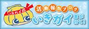 活動報告ブログはこちら ↓